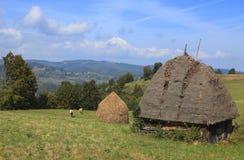 transylvanian liggande Arkivfoto