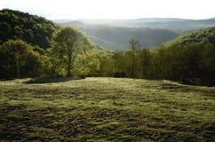 transylvanian liggande Arkivbild