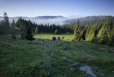 Transylvanian morning, sunny beautiful Carpathians Royalty Free Stock Photo