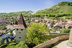 Transylvanian village Royalty Free Stock Image