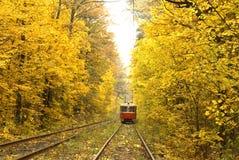 Tranvía roja vieja que corre a través del bosque del otoño foto de archivo