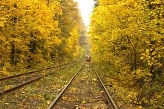 Tranvía roja vieja que corre a través del bosque del otoño fotografía de archivo