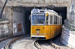 Tranvías en Budapest Fotografía de archivo libre de regalías