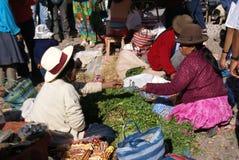 tranzakcja indyjskie bubla warzyw kobiety Obraz Stock