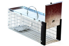 Trap. An empty small animal trap isolated in a white background Royalty Free Stock Images