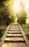 trap aan de zon - schoonheid in aard, godsdienst en geloofsconcept royalty-vrije stock afbeelding