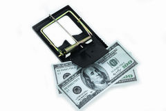 Trap with dollar bills isolated over white background, Risk in business, Businessman taking money from a mousetrap.  Stock Photo