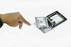 Trap with dollar bills isolated over white background, Risk in business, Businessman taking money from a mousetrap.  Stock Photography