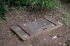 Trap door in the ground Stock Photography
