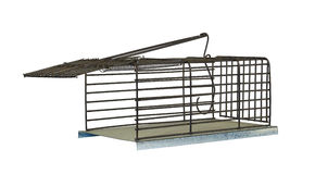 Trap for rats Stock Photography