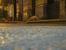 Trapani, Sizilien Stockbilder