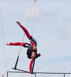 Trapeze Artist At Edmonton Alberta K-Days 2013 Royalty Free Stock Images