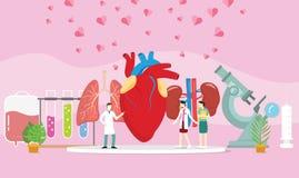 Trapianto sano del donatore di organo umano con la gente di medico e una certa diffusione del cuore - illustrazione di stock