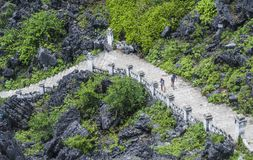 Trappa i berget - Vietnam Royaltyfri Bild
