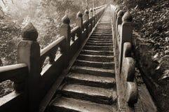 Trappa i de Wudangshan bergen Royaltyfria Bilder