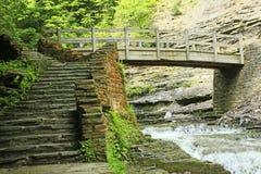 Trappa och bro Royaltyfri Fotografi