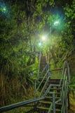 Trappa på natten Fotografering för Bildbyråer