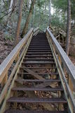 Trappa på Tallulah Gorge State Park i norr Georgia Arkivbild