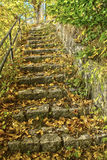 Trappa som göras av den naturliga stenen Royaltyfri Fotografi
