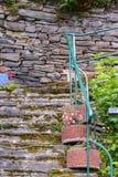Trappa som leder upp med växter royaltyfri foto