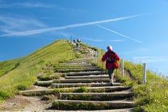 trappa som ska tops Royaltyfria Bilder