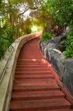 Trappa till överkanten av det guld- berget i Bangkok Arkivbilder