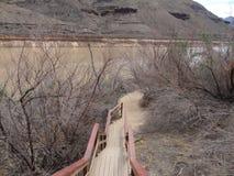 Trappa till Grand Canyon Royaltyfria Foton