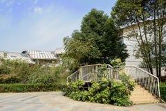Trappa till modern byggnad mot blurehimmel Royaltyfri Bild
