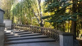 Trappan i hösten parkerar Sidalögnen på trappan Royaltyfri Foto