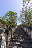 Trappaväg till den storslagna slotten Royaltyfri Foto
