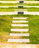 Trappavägen på gräsplanträdgård, väljer fokusen Arkivbild