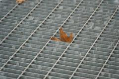 Trappe carrée en métal dans le trottoir urbain, la couverture de trou d'homme d'égout avec des lignes d'inscription et la feuille Image libre de droits