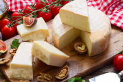 Trappe cheese Stock Photography