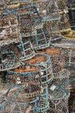 Trappe de crabe Image libre de droits