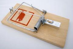 Trappe de rat Photographie stock libre de droits