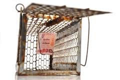 Trappe de souris Image libre de droits