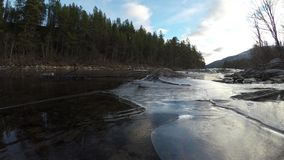 Trapped air under clear river shore ice with moving water. And forest background stock footage