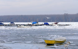 Trapped boats into the frozen Danube river Stock Images