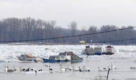 Trapped boats into the frozen Danube river Royalty Free Stock Images