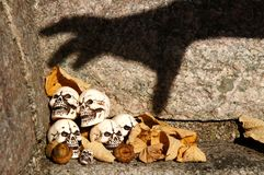Trapped skulls. Skulls trapped by a shadow hand Stock Images