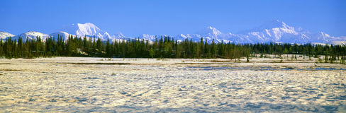 Trapper Creek and Mount McKinley, Royalty Free Stock Photo