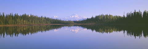 Trapper Creek and Mount McKinley Royalty Free Stock Photos