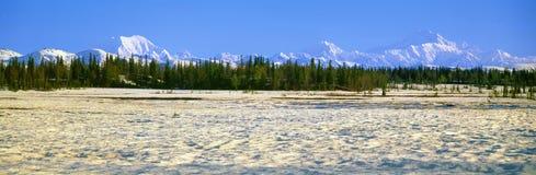 Trapper-Nebenfluss und Montierung McKinley, Lizenzfreies Stockfoto