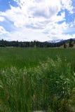 Trapper Peak, Bitterroot Mountains - Montana Stock Photo