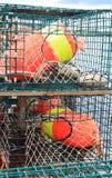 Trappes de langoustine et bouées colorées Photographie stock