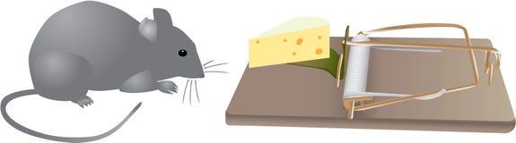 Trappes de souris avant illustration de vecteur
