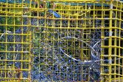 Trappola d'acciaio dell'aragosta immagini stock