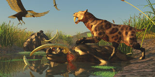 Trappola del mammut lanoso Fotografie Stock