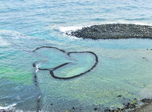 Trappola del pesce del Gemello-cuore Fotografia Stock Libera da Diritti