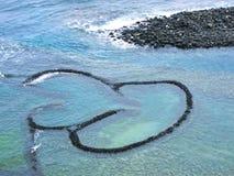 Trappola del pesce del Gemello-cuore Fotografie Stock
